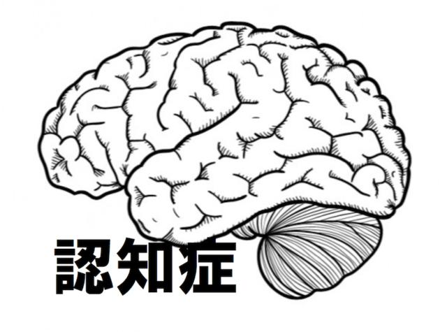 認知症図3.png